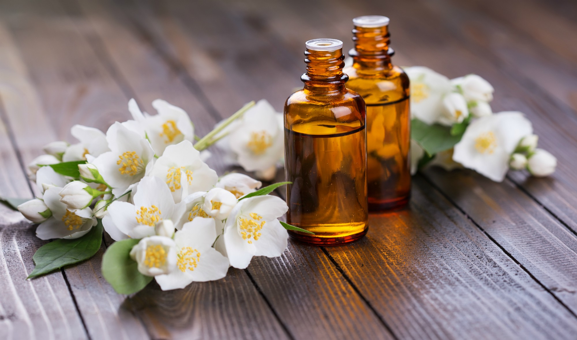 What Are The Benefits of Plant-based Facial Treatment Oils